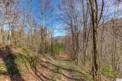 Sevier County Residential Lots & Land For Sale: Lot 3 Ski Mountain Road
