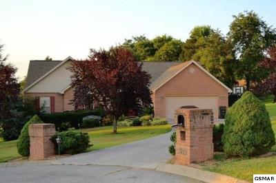 Sevierville Single Family Home For Sale: 3210 Walkingstick Ct