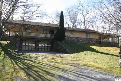 Gatlinburg Single Family Home For Sale: 601 Reed Ridge Rd