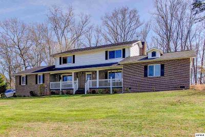 Sevierville Single Family Home For Sale: 1536 Canterbury Downs Road