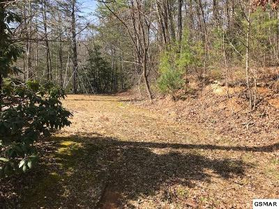 Gatlinburg TN Residential Lots & Land For Sale: $45,000