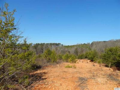 Sevier County Residential Lots & Land For Sale: Piney Rd Lots 2-5