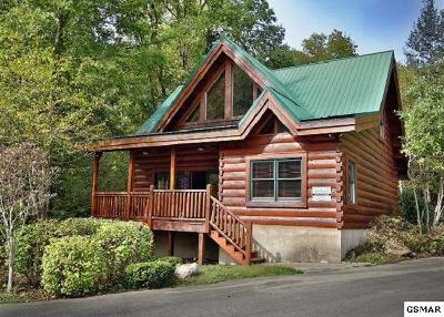 Sevierville Single Family Home For Sale: 1810 Smoky Cove Road
