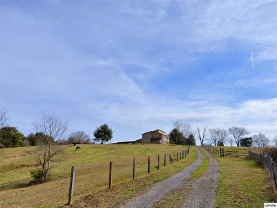 Sevier County Single Family Home For Sale: 2120 Linn View Dr