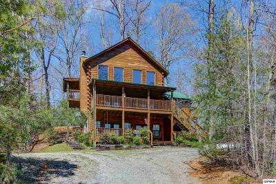 Sevierville TN Single Family Home For Sale: $465,000