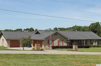 Sevierville Single Family Home For Sale: 1986 Rays Gap Rd