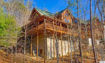 Sevierville Single Family Home For Sale: 2009 Bear Haven Way