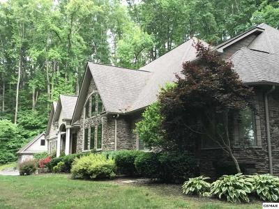 Sevierville Single Family Home For Sale: 4164 Burning Tree Ln