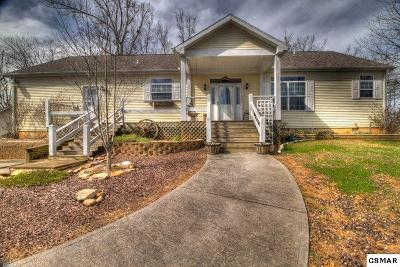 Sevierville Single Family Home For Sale: 1048 Harbor Point Dr
