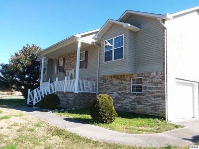 Sevierville Single Family Home For Sale: 1372 River Run Cir
