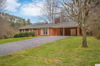 Sevierville Single Family Home For Sale: 3688 Richardson Cove Rd