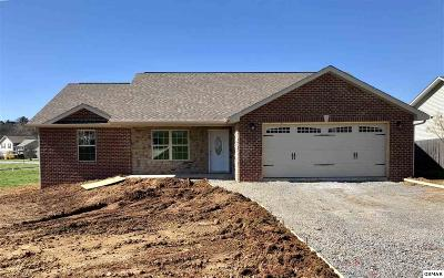 Sevierville Single Family Home For Sale: 2113 Murphys Chapel Dr
