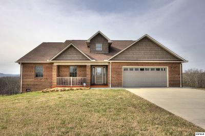 Rutledge Single Family Home For Sale: 386 Tumbleweed Trl