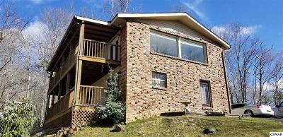 Gatlinburg Single Family Home For Sale: 711 Sunshine Trl