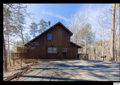 Sevierville Single Family Home For Sale: 2304 Summer Lane