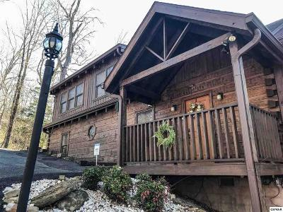 Sevierville Single Family Home For Sale: 237 Cherokee Path Way