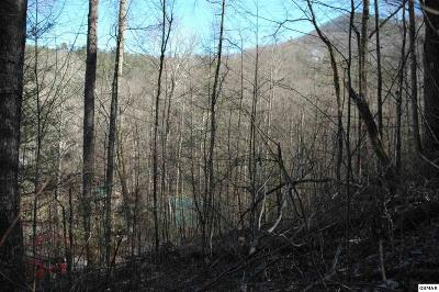 Residential Lots & Land For Sale: Lot 6 Wilderness Mountain Road