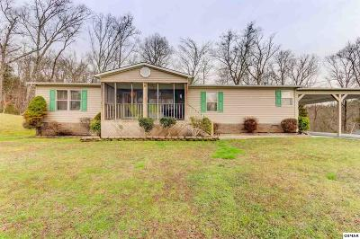 Sevierville Single Family Home For Sale: 660 Apple Valley Road