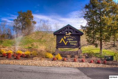 Pigeon Forge Single Family Home For Sale: 124 Alpine Mountain Way