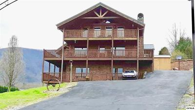 Sevierville Single Family Home For Sale: 2466 Bryan Rd