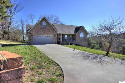 Sevierville Single Family Home For Sale: 1502 E Milford Haven Dr