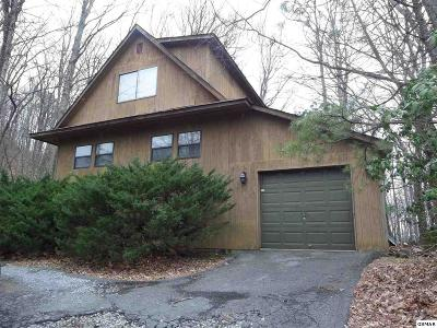 Gatlinburg Single Family Home For Sale: 1160 Ski View Dr