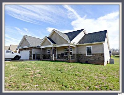 Jefferson City Single Family Home For Sale: 599 N Chucky Pike