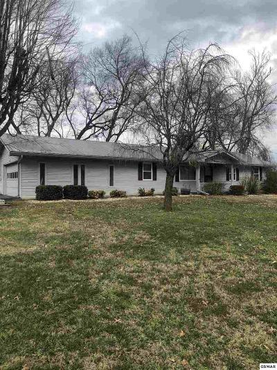 Sevierville Single Family Home For Sale: 1226 Roberts Rd