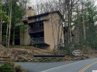 Gatlinburg Condo/Townhouse For Sale: 1235 Ski Mountain Road