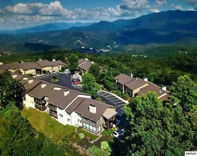 Gatlinburg Condo/Townhouse For Sale: 1050 Ski View Dr