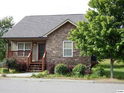 Sevierville TN Single Family Home For Sale: $197,000