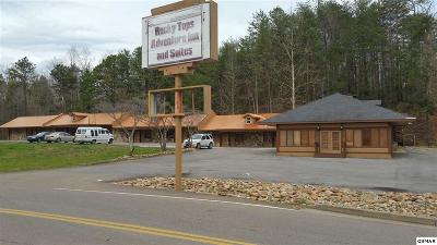 Gatlinburg Commercial For Sale: 1901 E Parkway