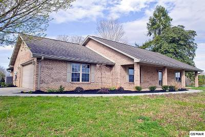 Sevierville Single Family Home For Sale: 1366 Crystal View Dr.