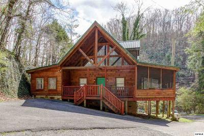 Sevierville Single Family Home For Sale: 401 King Branch Road