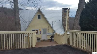 Gatlinburg Single Family Home For Sale: 1835 Zurich Ct