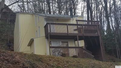 Gatlinburg Single Family Home For Sale: 1520 Zurich Rd