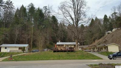Gatlinburg Commercial For Sale: 1629 E Parkway
