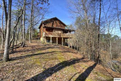 Sevierville Single Family Home For Sale: 833 S New Era Road