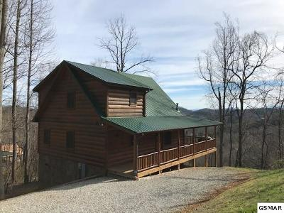 Sevierville Single Family Home For Sale: 3435 Lonesome Pine Way