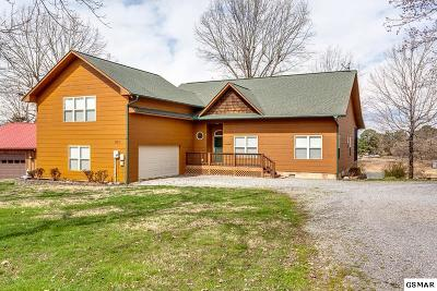Sevierville Single Family Home For Sale: 905 Holiday Ln