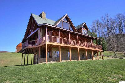 Sevierville Single Family Home For Sale: 3391 Clear Valley Drive