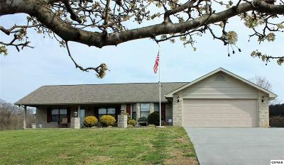 Sevierville Single Family Home For Sale: 1439 River Run Cir