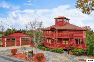 Sevierville Single Family Home For Sale: 2079 Kerr Rd