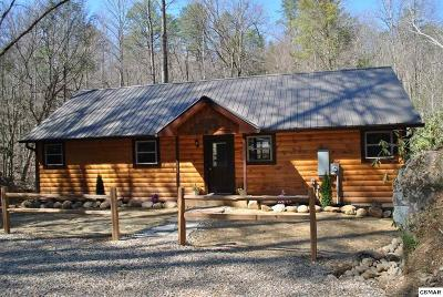 Gatlinburg TN Single Family Home For Sale: $215,000