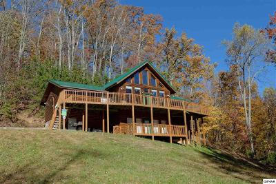 Gatlinburg Single Family Home For Sale: 926 Smoky Ct
