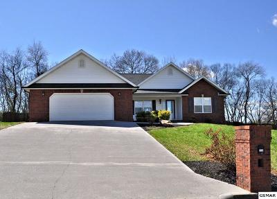 Sevierville Single Family Home For Sale: 2550 Covington Circle