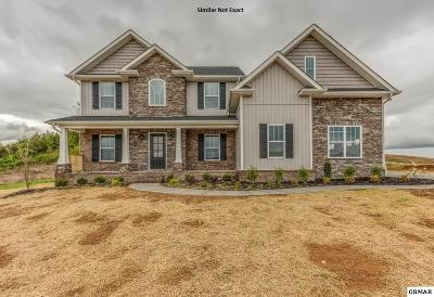 Sevier County Single Family Home For Sale: 244 Bluff Shadows Ln.