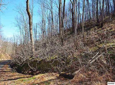 Gatlinburg Residential Lots & Land For Sale: Lot 545 Deep Hollow Court