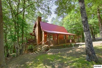 Sevierville Single Family Home For Sale: 1785 Blue Ridge Rd