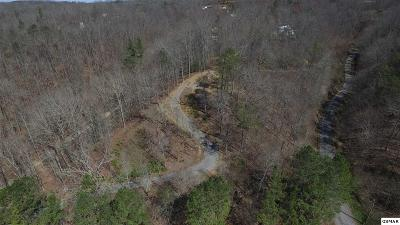 Cocke County Residential Lots & Land For Sale: Lots 17 & 18 Highway 25e